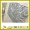 Polished Stone Marble/Granite Black/Grey Tiles for Bathroom & Kitchen Flooring/Wall