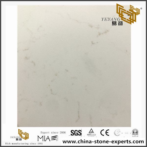 Frosty Carrina Quartz Countertop(YQ-5141)