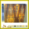 SGS Chinese Cheap Price Yellow Onyx Slab for Walling (YQW-OS1004)