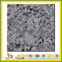 Polished G439 Granite Slabs (YQZ-G1054)