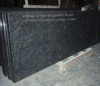 China Butterfly Blue Granite Kitchen Countertop (YQZ-GC1026)
