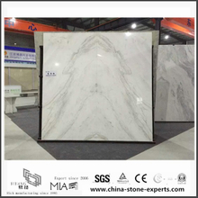 New Polished Arabescato Venato White Marble for Wall Background (YQW-MSA0622001)