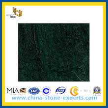 Discount Natural Polished India Green Marble Stone Tile for Floor(YQC)