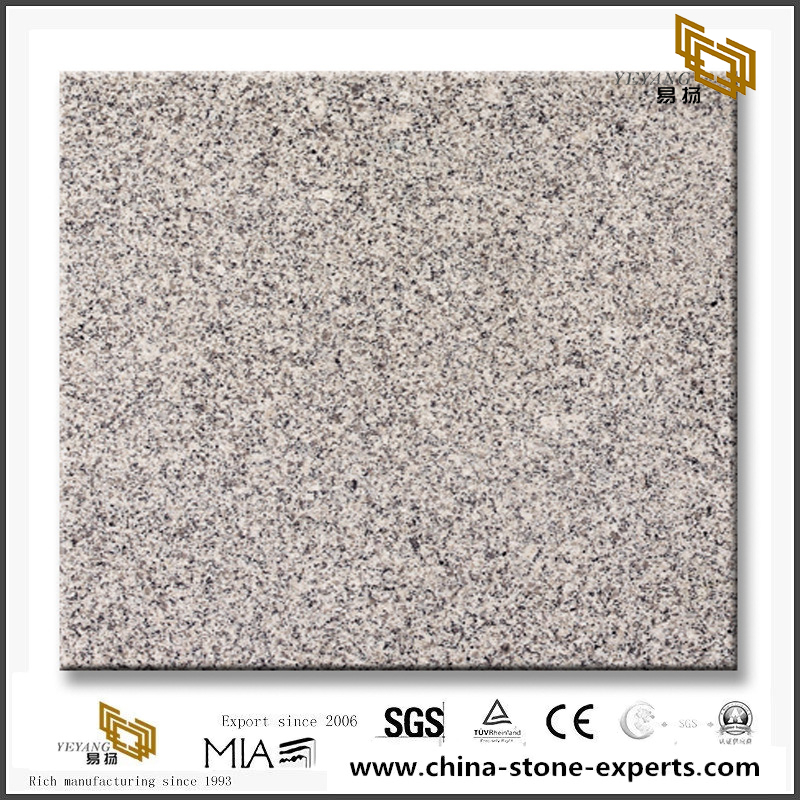 Grey Granite G603 Talila Granite Slabs For Sale
