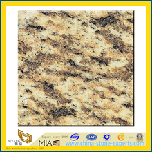 Tiger Skin Yellow Granite Slabs for Countertops (YQZ-G1051)