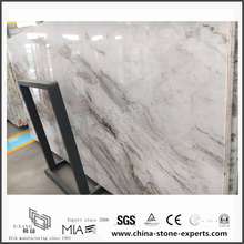 Charming New Polished Arabescato Venato White Marble for Floor Tiles (YQW-MSA0621007)