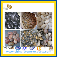 Cheap Pebble Stone and Cobble Stone for Landscaping(YQG-CS1016)