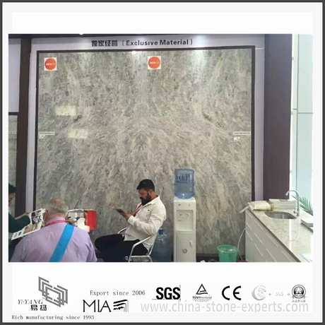 Prefab Diy New Vermont Grey Marble Slab for Hall Background (YQW-MS311207)