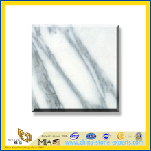 Polished Natural Stone Arabescato Marble Slabs for Wall&Flooring (YQC)