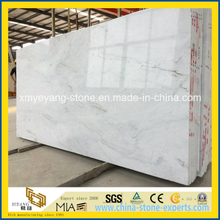 New Arrival Castro White Marble Material for Floor/Wall Decoration Material