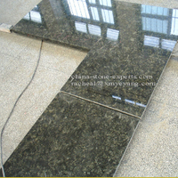 Polished Butterfly Green Granite Kitchen Countertop (YQZ-GC1032)