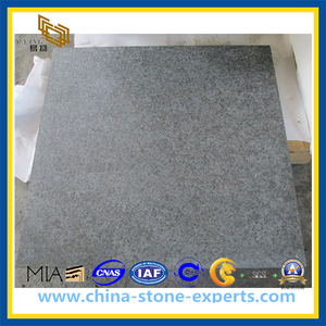 Flamed G684 Black Granite Basalt Paving Tile for Outdoor Paving (YQZ-GT1008)