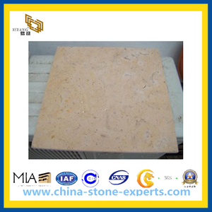 Natural Yellow Limestone stone for Wall Decoration(YQG-PV1019)