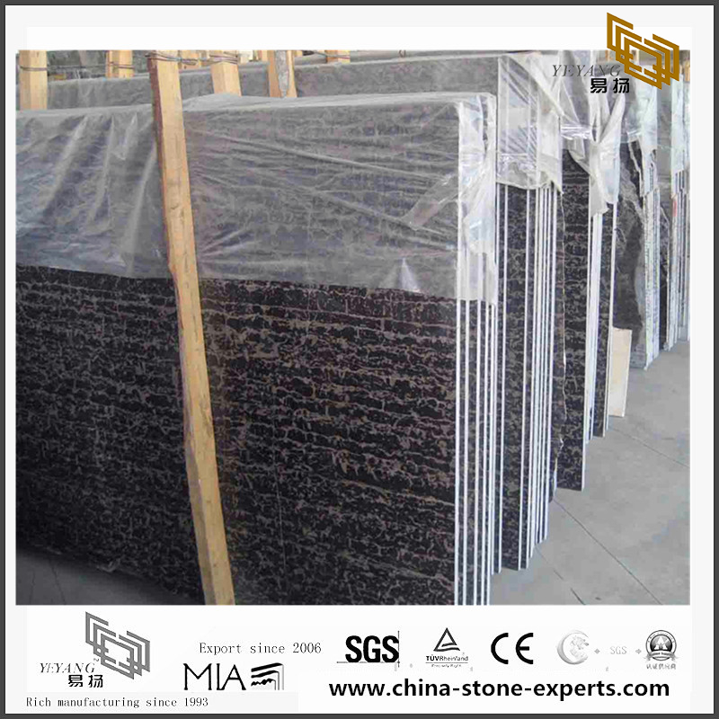 China Portoro Marble for Background design(YQN-082904)