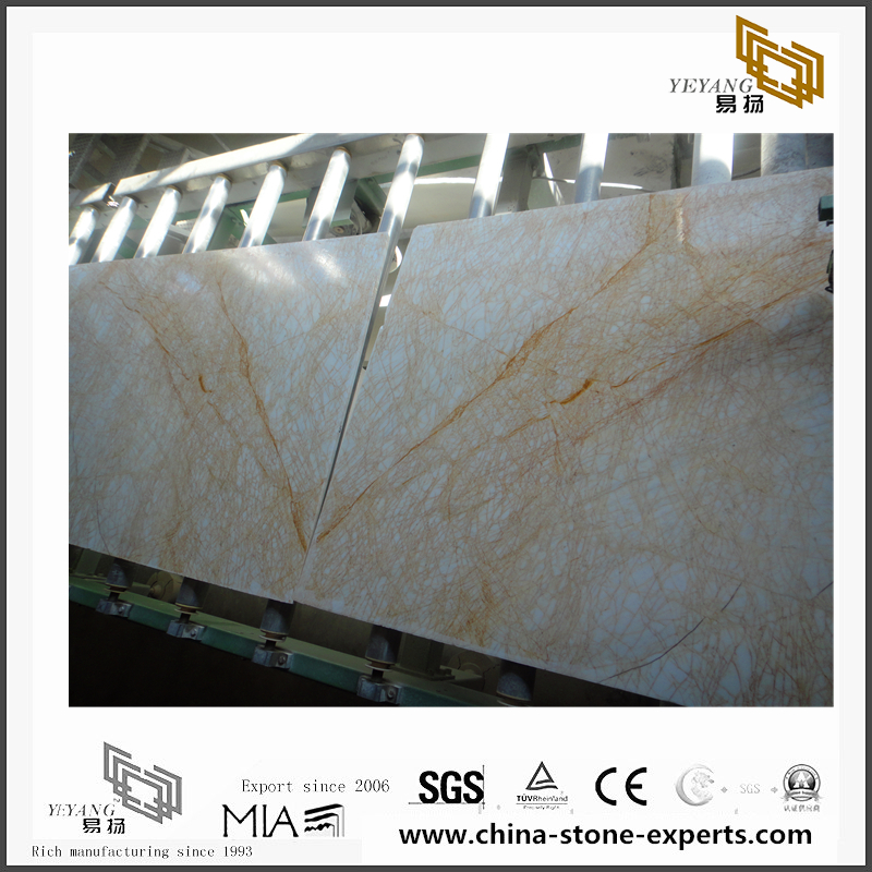 Custom Golden Spider Marble for Wall Backgrounds & Floor Tiles (YQN-092610)