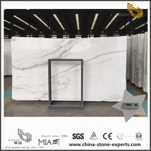 Discount Arabescato Venato White Marbles for sale (YQW-MSA070604)