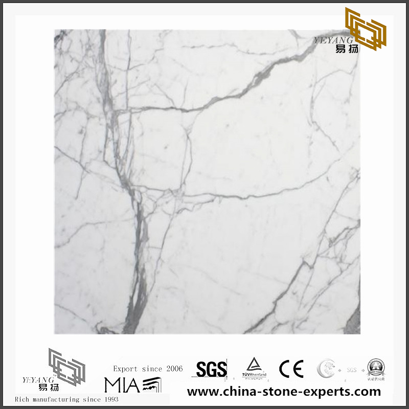 Statuario Marble for Wall Backgrounds & Floor Tiles(YQN-092205)