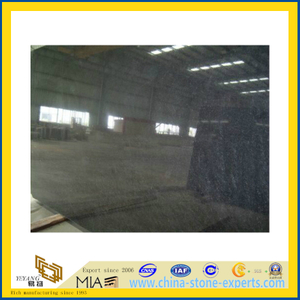 Polished Black Pearl Granite Tile, Slabs, Counter Top(YQC)