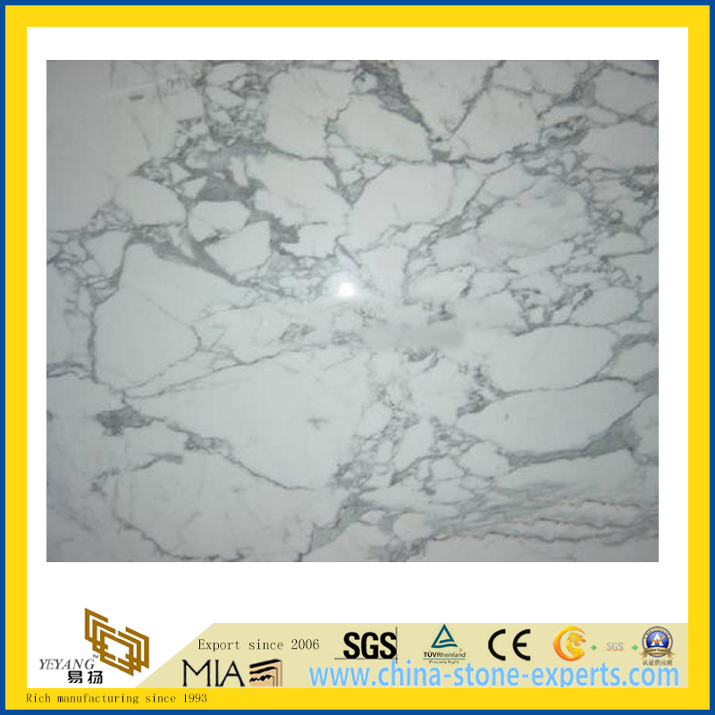 Polished Arabescato White Marble Slabs for Countertop/Vanity Top