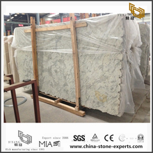 Natural Andromeda White Granite Countertops for Bathroom Design (YQW-GC0714011)