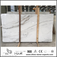 New Exclusive Castro White Marble Slabs for Countertop and Wall / Floor Decor with cheap price