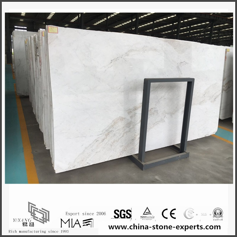 Nice New Polished Arabescato Venato White Marble for Floor Tiles (YQW-MSA0621010)