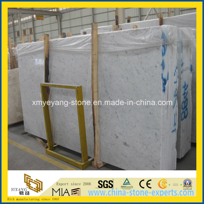 Italian Carrara White Marble Slab for Walling or Floor Tile